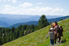 people with horses on a wildflower mountain idaho