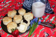 fresh biscuits for picnic