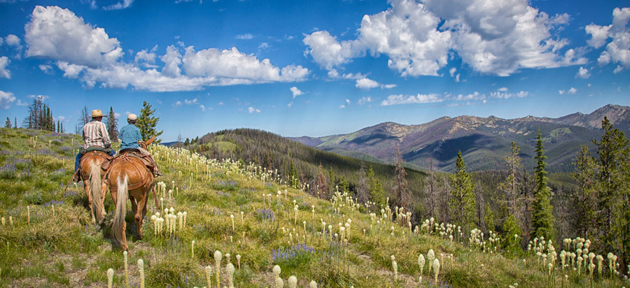 beargrass in bloom and two horseback riders in idaho