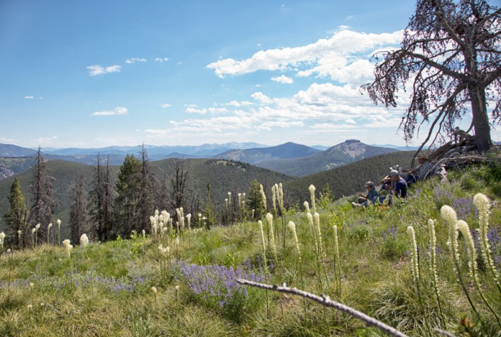 people sitting mountain meadow overlooking idaho wilderness